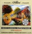 سیم گیتار آلیس